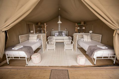 Oldmacdaddy Gallery Tented Camps (13)
